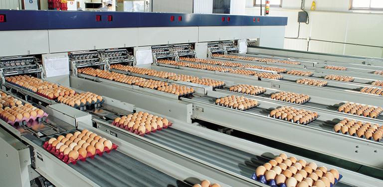 高速涡轮风机在食品工业应用案例